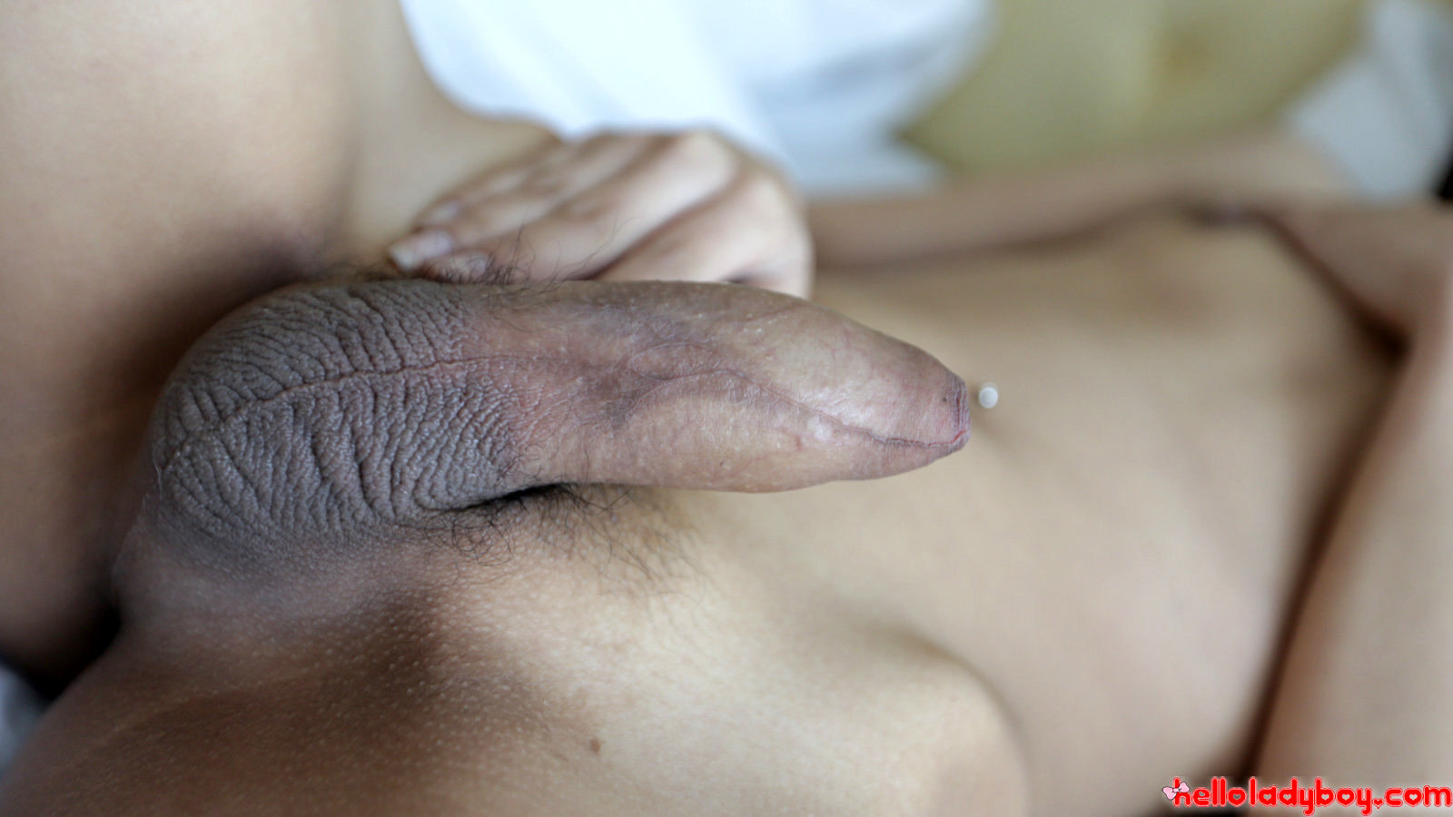19 Year Old Asian TGirl Strips And Blows White Dick