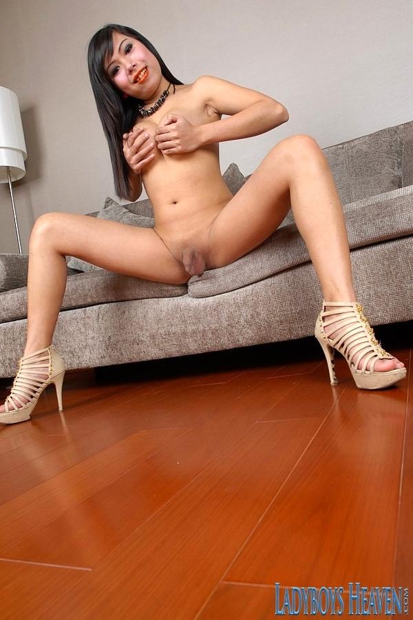 Asian Shemale Ying Solo Masturbation