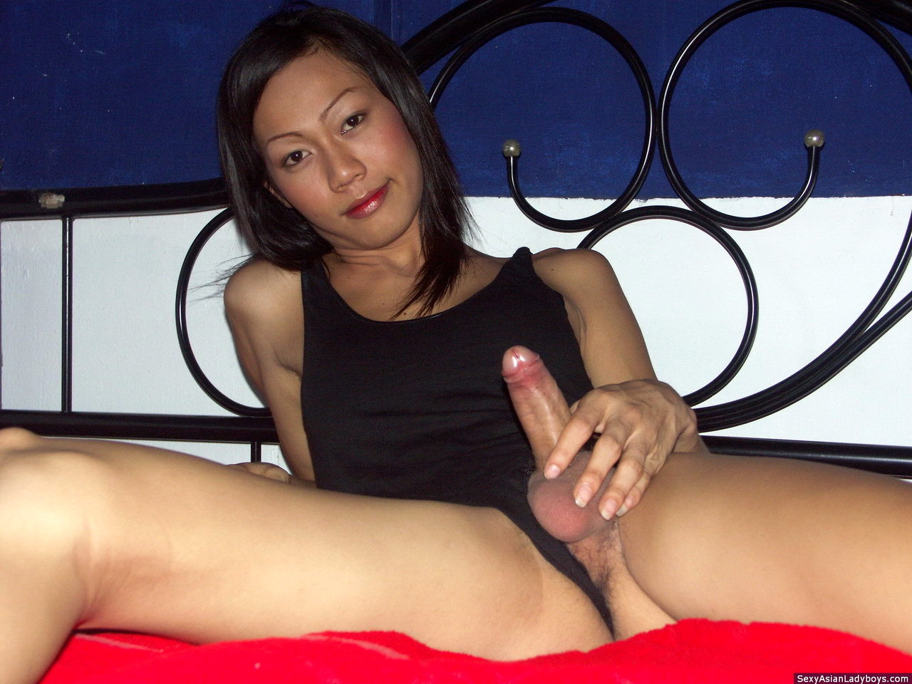 Busty T Girl Playing With Her Rock Raw Dick Until Explosion