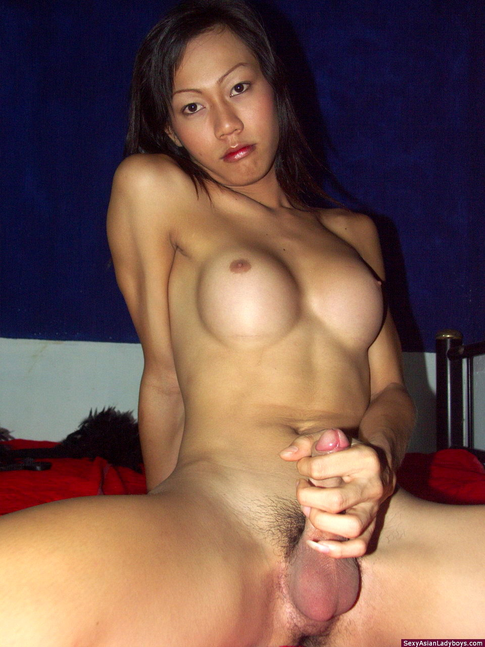 Busty TGirl Nancy Plays With Her Hardon Until Shooting A Massive Load Of Jizz