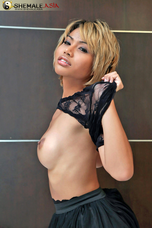 Could This Be Bangkok's Sexiest Wanking Ladyboy?