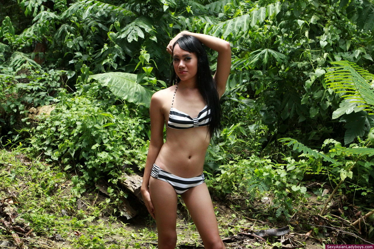 Filipino Shemale Stripping In A Forest To Flash Her Rough Penis And Her Willing Ass-Hole