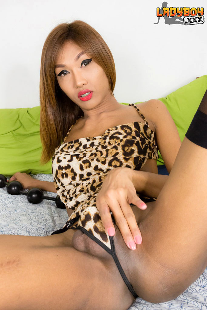 Fish Is A Perfect Ladyboy! She Is Tall, Slim, Has Yummy Sensitive Tits That Feels Stunning In The Hands