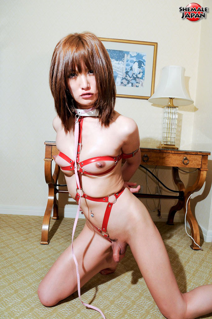 Innocent Pale Newhalf Babe Love To Be Dominated