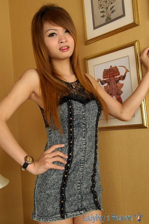 Inviting Asian Tgirl Baa