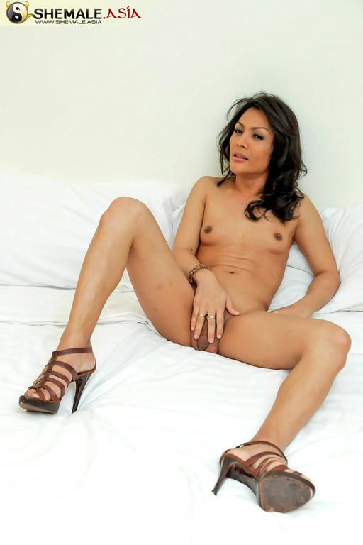 Nice Girlie Transexual Unloads Her Sperm