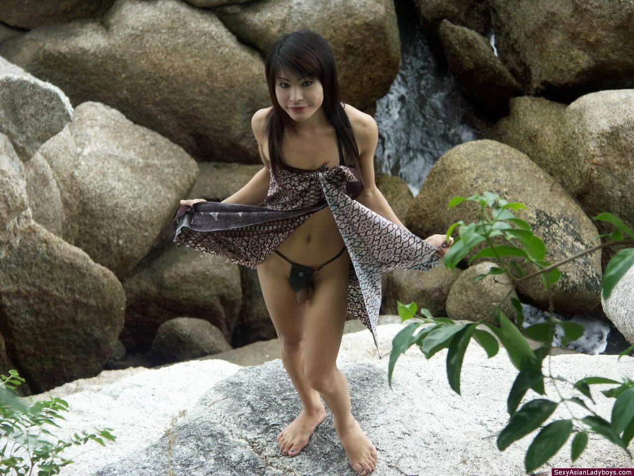 Sensuous Shemale Flashing Her Rock Raw Penis Outdoors
