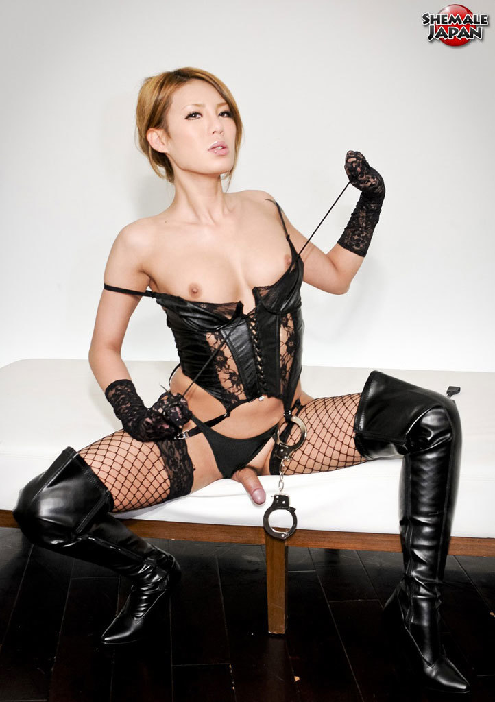 Sensuous T-Girl In Lace And Leather