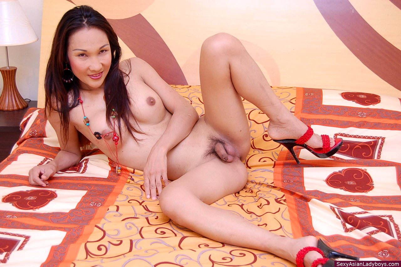Steamy Asian TGirl Spreading To Flash Close Ups Of Her Tight Backdoor