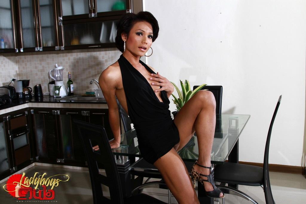 Super Steamy T-Girl Sonya Strips & Poses