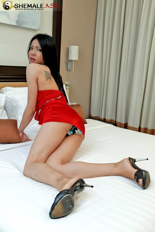 T-Girl Wanks Big Bulge In Her Swimsuit