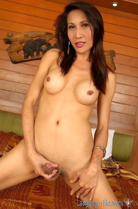 Tgirl Lust With TGirl Pim