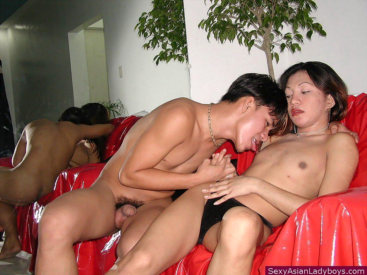 Thai Transexual Having Her Butt Destroyed And Her Face Creamed