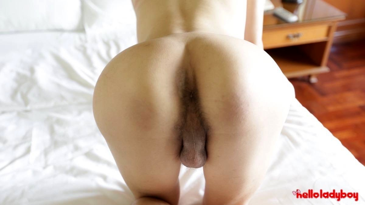 Tinie And Very Feminine Femboy Lavishes In The Luxury Of White Travelers Penis