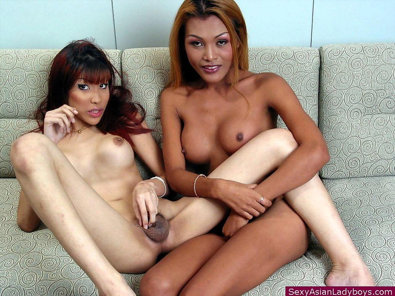 Two Joyful TGirls Play With Their Boobies And Pricks